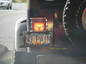 And on the way home, stopped at a light, I saw this impressive license plate .. the driver waved at me .. ha ha ha.. true, no pain, no gain, how appropriate this was!