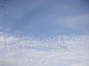 Lovely lovely love blue skies